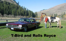 T-Bird and Rolls Royce